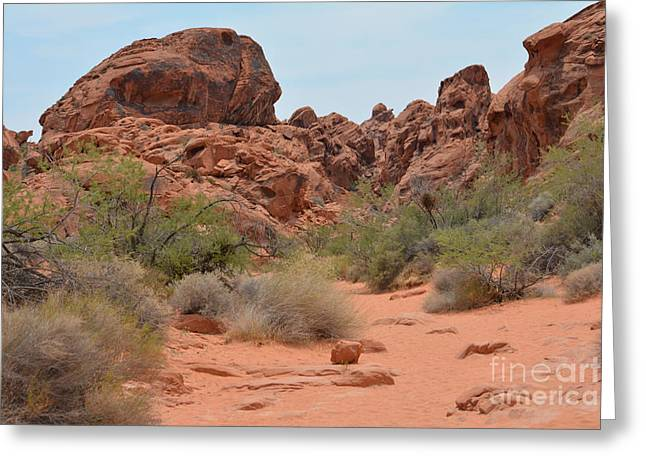 Boulders Tapestries - Textiles Greeting Cards - The Path Greeting Card by Edna Weber