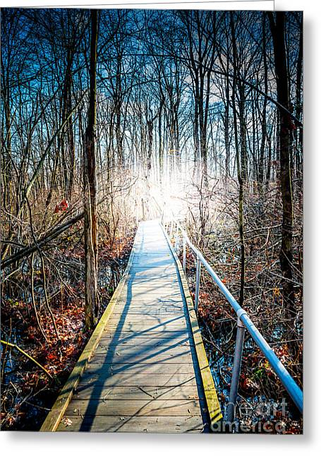 Following Jesus Greeting Cards - The Path Home Greeting Card by Jim DeLillo