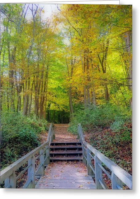 Greeting Cards - The Path Into Autumn Woods Greeting Card by Kay Novy