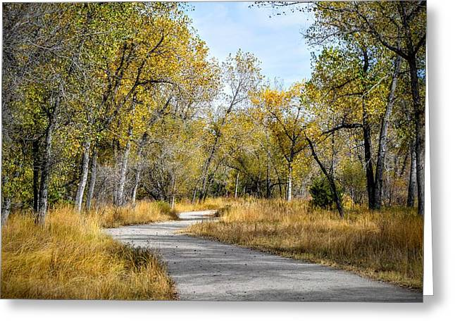 The Path Greeting Card by Michael  Brungardt