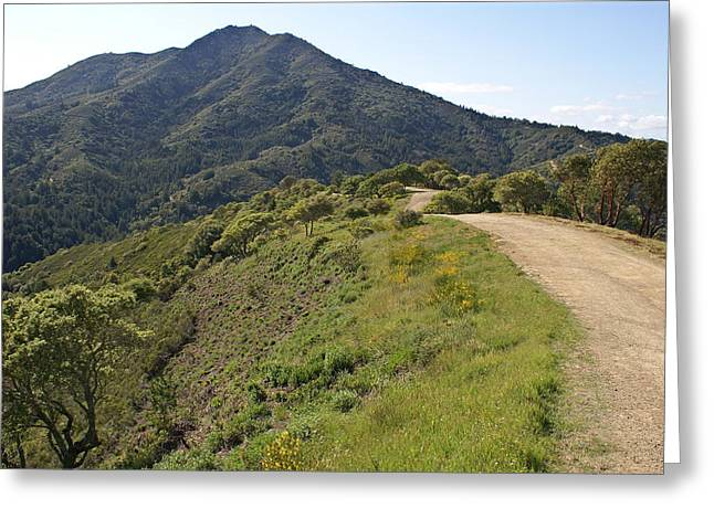 Recently Sold -  - Marin County Greeting Cards - The Path to Tamalpais Greeting Card by Ben Upham