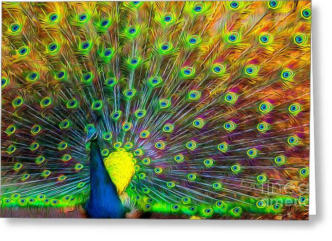 The Peacock Greeting Card by Adrian Evans