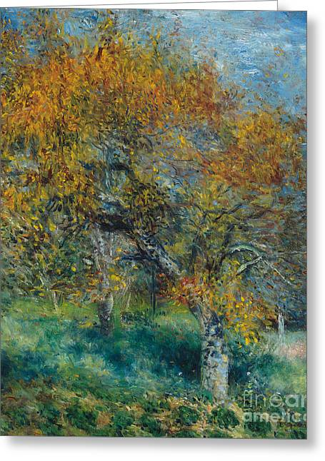 The Pear Tree Greeting Card by Pierre Auguste Renoir