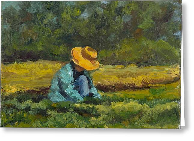 Top Seller Greeting Cards - The Picker Greeting Card by Julie Rumsey