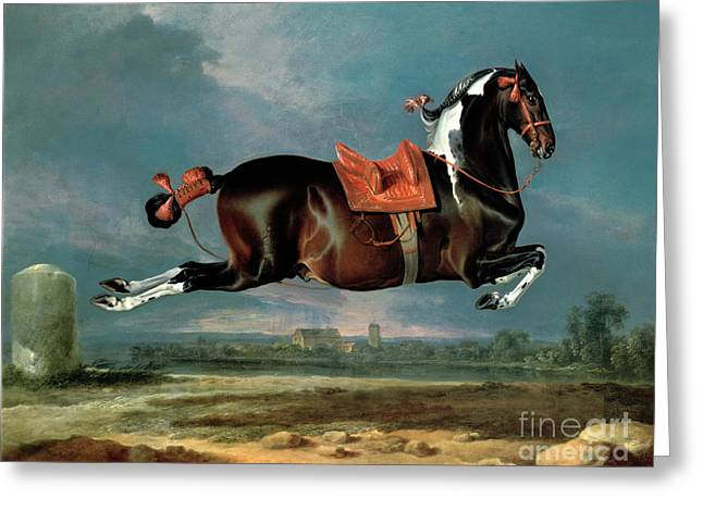 Saddle Greeting Cards - The Piebald Horse Greeting Card by Johann Georg Hamilton