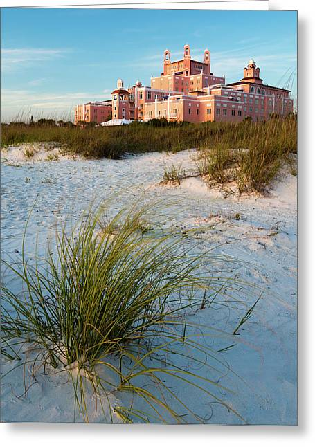 St Petersburg Florida Greeting Cards - The Pink Palace Greeting Card by Clay Townsend
