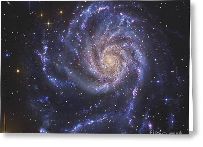 Constellation Greeting Cards - The Pinwheel Galaxy, Also Known As Ngc Greeting Card by R Jay GaBany
