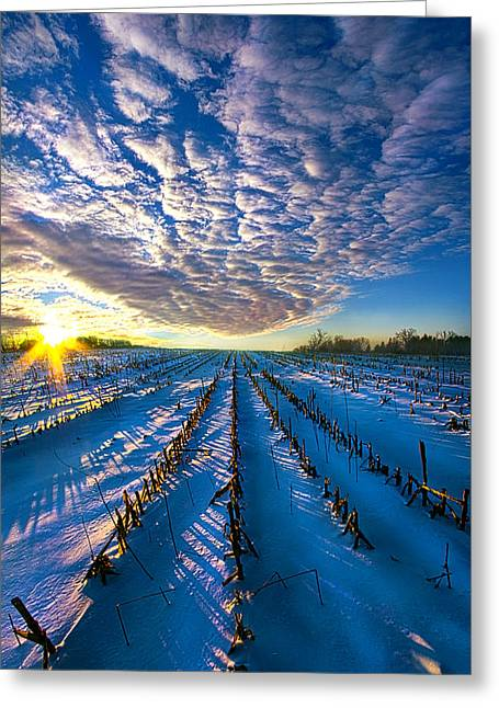 The Places Where I've Been Greeting Card by Phil Koch