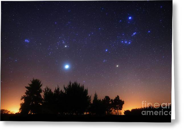 Backlit Greeting Cards - The Pleiades, Taurus And Orion Greeting Card by Luis Argerich