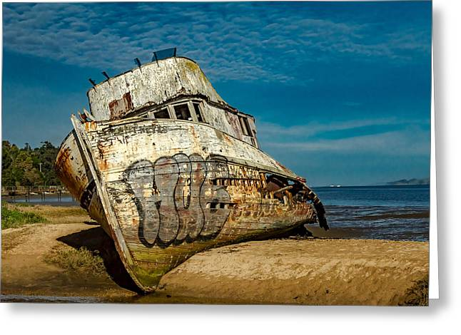 The Point Reyes Beached Greeting Card by Bill Gallagher