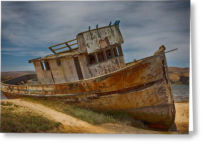 California Beaches Greeting Cards - The Point Reyes Greeting Card by Jacque The Muse
