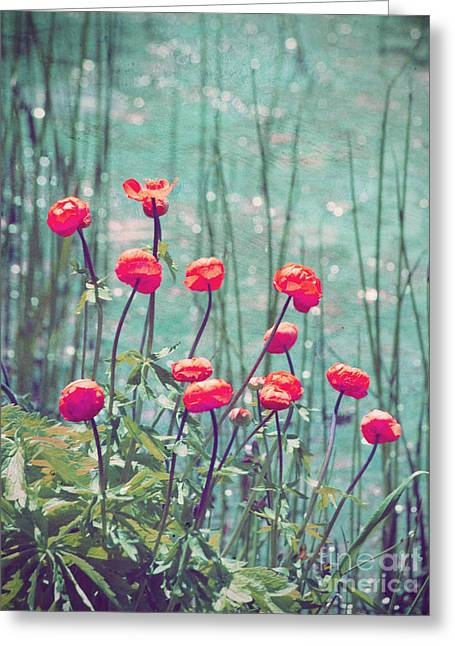 Process Greeting Cards - The Poppies Greeting Card by Tara Turner