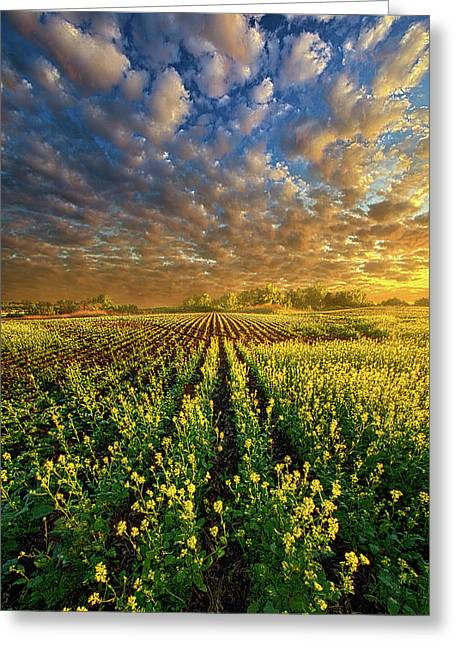 The Possibilities Are Many Greeting Card by Phil Koch