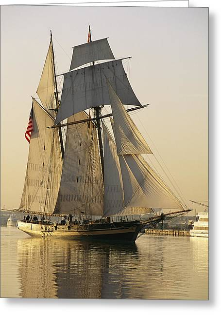 """sailing Ship"" Greeting Cards - The Pride Of Baltimore Clipper Ship Greeting Card by George Grall"