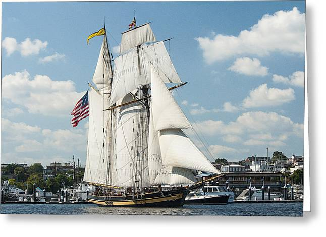 Historic Schooner Greeting Cards - The Pride of Baltimore II in Baltimore Harbor Greeting Card by Lauren Brice