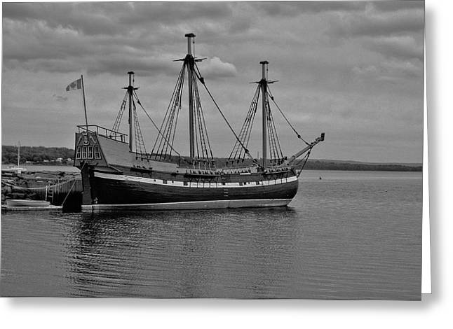 Tall Ships Greeting Cards - The Pride Of Pictou Greeting Card by Kathleen Sartoris