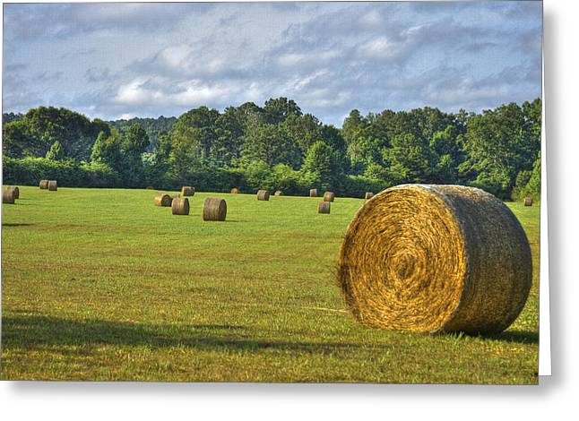 Pastureland Greeting Cards - The Productive Southern Hay Field Greeting Card by Reid Callaway