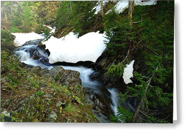 Snow Drifts Greeting Cards - The Promise Of Things Greeting Card by Jeff  Swan