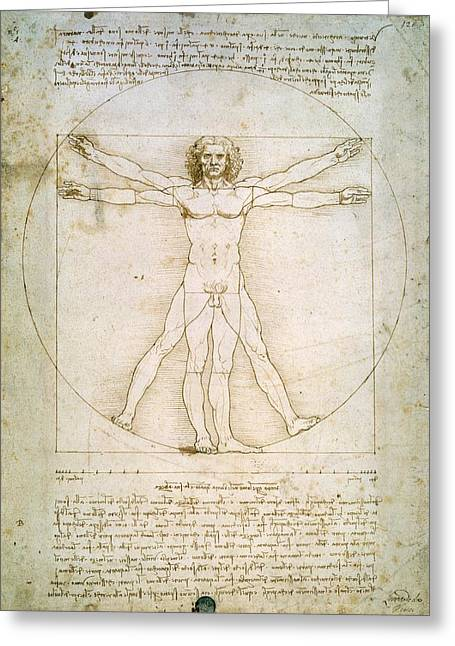 Figures Paintings Greeting Cards - The Proportions of the Human Figure  Greeting Card by Leonardo Da Vinci