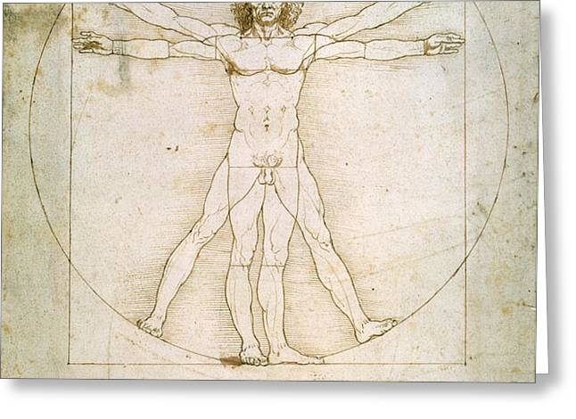 The Proportions of the Human Figure  Greeting Card by Leonardo Da Vinci