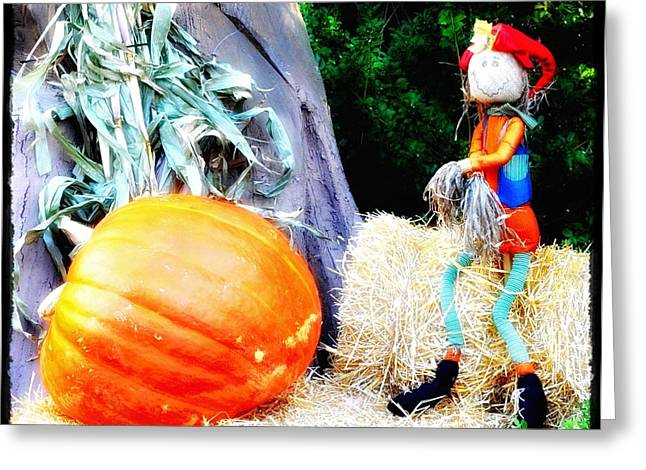 the Pumpkin and the Scarecrow Greeting Card by Bill Cannon
