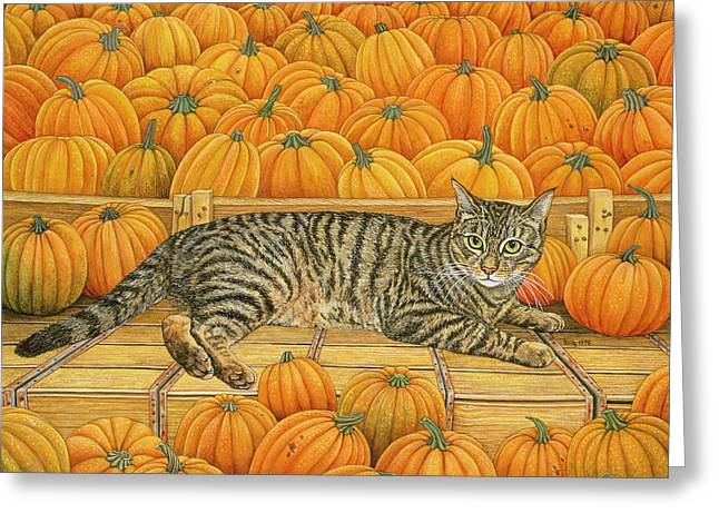 Collar Greeting Cards - The Pumpkin Cat Greeting Card by Ditz
