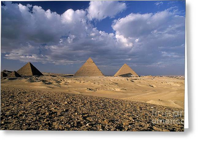 Archaeology Archeological Greeting Cards - The Pyramids at Giza Greeting Card by Sami Sarkis