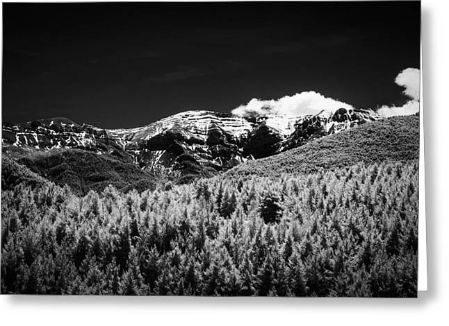 Gentle Scene Greeting Cards - The Pyrenees Greeting Card by Erik Brede