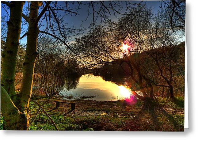 Images Of Trees Greeting Cards - The Quoile Greeting Card by Kim Shatwell-Irishphotographer