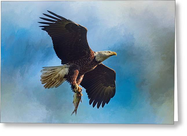 Tennessee River Greeting Cards - The Raptors Catch Greeting Card by Jai Johnson