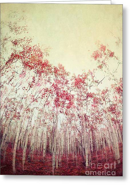Shades Of Red Greeting Cards - The Red Forest Greeting Card by Priska Wettstein