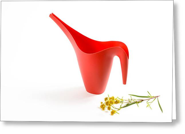 The Red Watering Can With Flowers Greeting Card by Lynn Berreitter