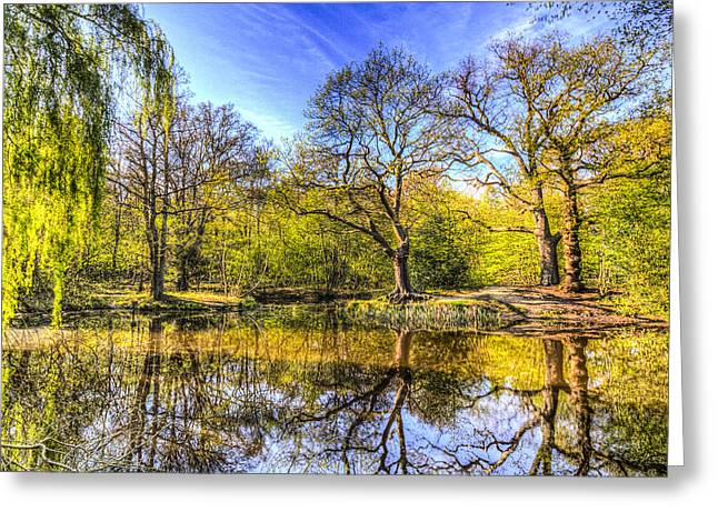 Reflecting Water Greeting Cards - The Reflection Pond Greeting Card by David Pyatt