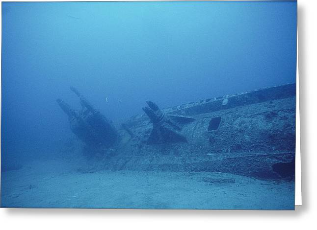 Ruins And Remains Greeting Cards - The Remains Of A German U-boat U-352 Greeting Card by Brian J. Skerry