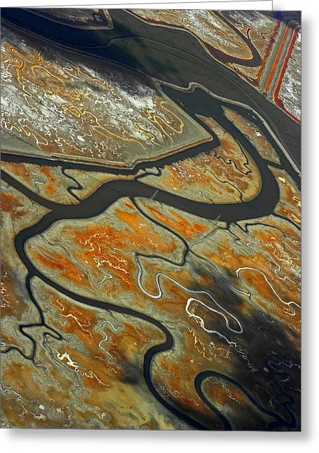 San Francisco Airport Greeting Cards - The River Bends III Greeting Card by Elizabeth Hoskinson