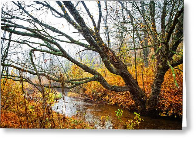 The River Runs Through Greeting Card by Debra and Dave Vanderlaan