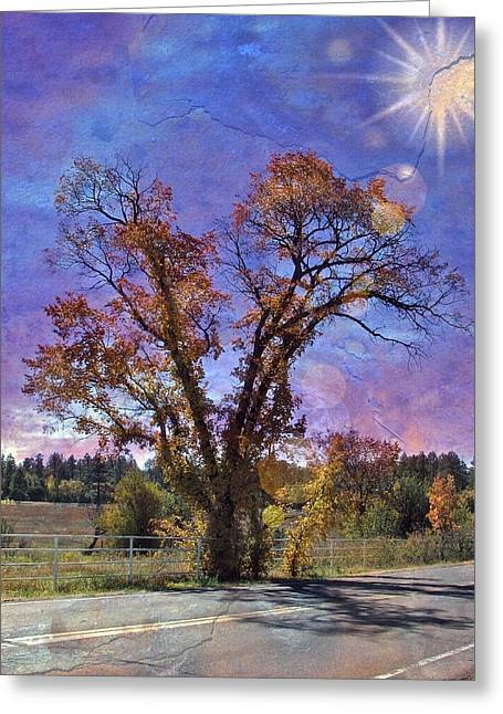 Sun Baker Greeting Cards - The Road Less Traveled Greeting Card by Lisa S Baker