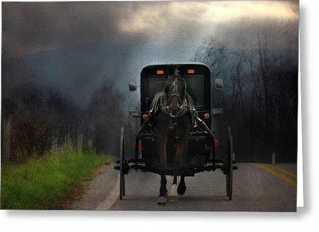 The Road Less Traveled Greeting Card by Lori Deiter