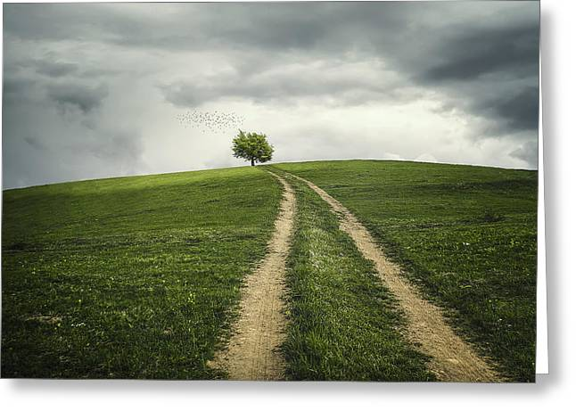 Lifestyle Greeting Cards - The road to tree Greeting Card by Bess Hamiti