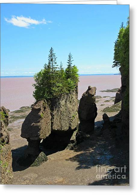 Tidal Photographs Greeting Cards - The Rocks at Hopewell Cape Greeting Card by Crystal Loppie