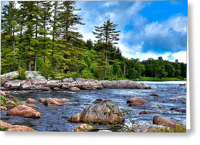 The Trees Greeting Cards - The Rocky Moose River Greeting Card by David Patterson