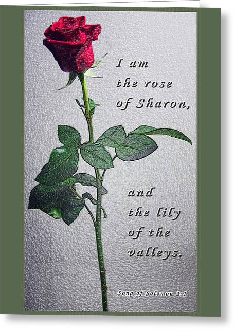 The Rose - Scripture Greeting Card by Terry Wallace