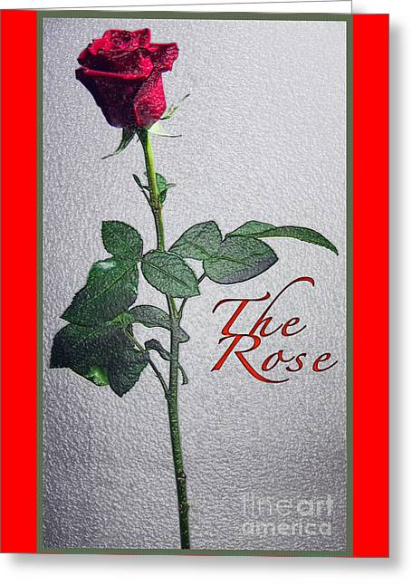 The Rose Greeting Card by Terry Wallace