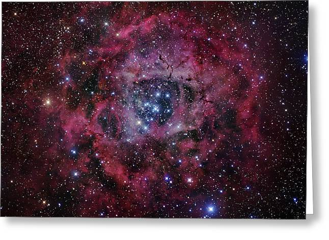 Rosette Greeting Cards - The Rosette Nebula Greeting Card by Robert Gendler