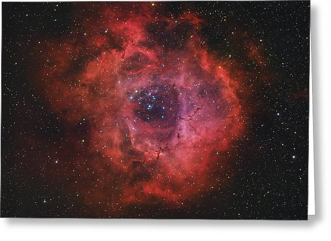 Medium Pink Greeting Cards - The Rosette Nebula Greeting Card by Rolf Geissinger