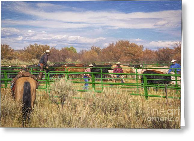 The Round Up Greeting Card by Janice Rae Pariza