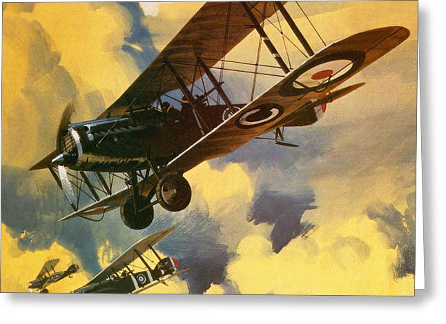 The Royal Flying Corps Greeting Card by Wilf Hardy