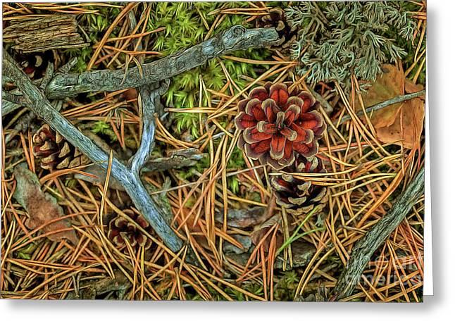The Scent Of Pine Forest II Greeting Card by Veikko Suikkanen