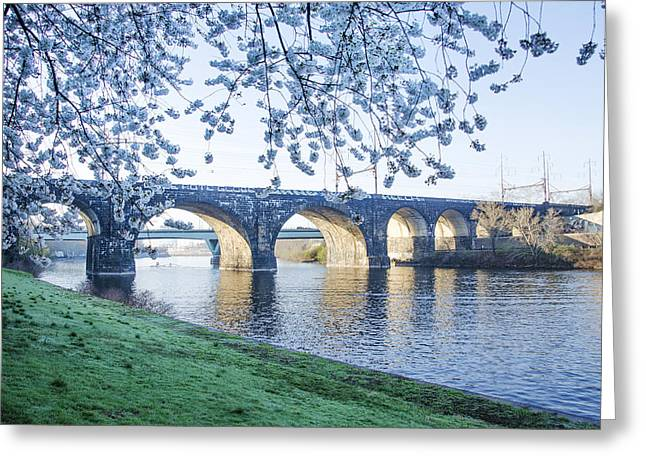 Schuylkill Digital Art Greeting Cards - The Schuylkill River at Springtime Greeting Card by Bill Cannon