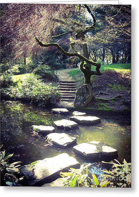 Stepping Stones Greeting Cards - The Quiet Path  Greeting Card by Turtle Shoaf